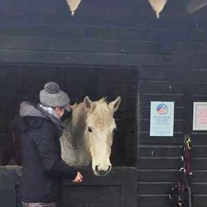 VT-Equine-Healing