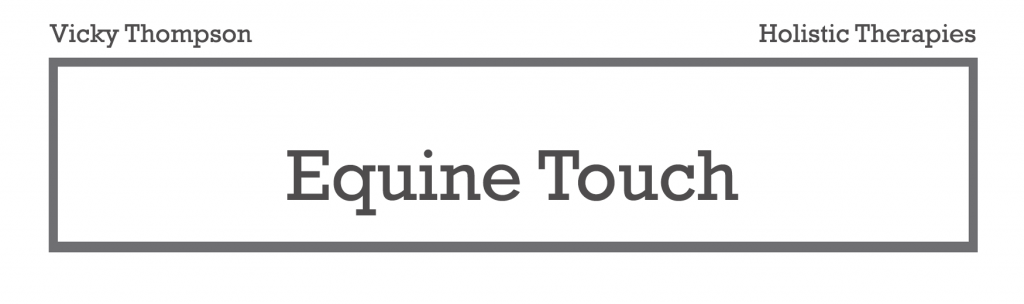 equine-touch-bodywork-massage